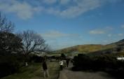 View at Calton Hill